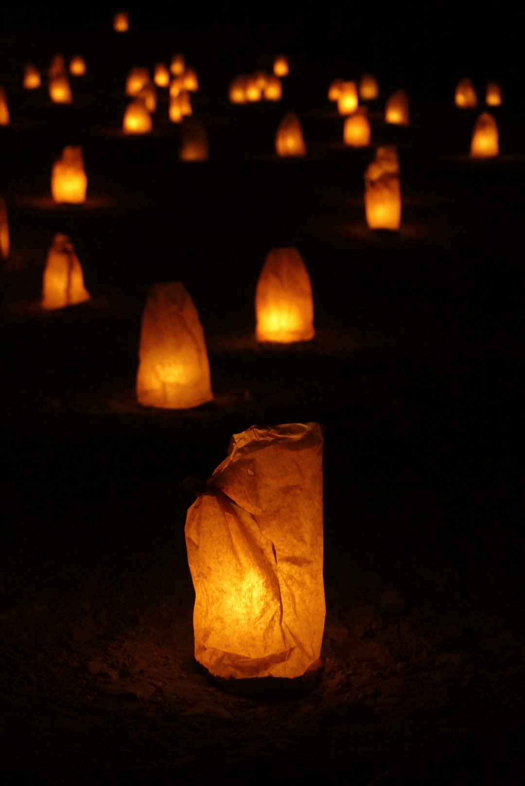 Petra de nuit