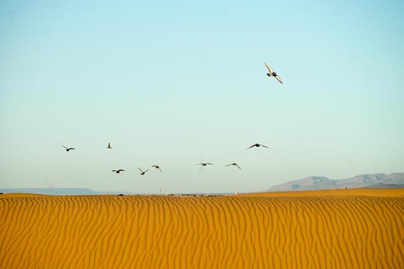 Maroc désert romantique