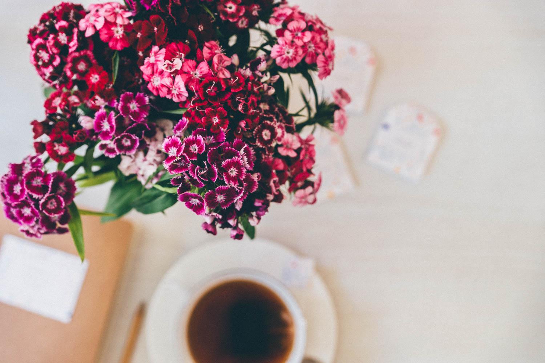 ete-toulouse-fleurs