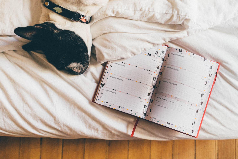 Agenda vie de miettes